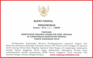 Formasi Seleksi Penerimaan CPNS Kabupaten Kendal Tahun 2018