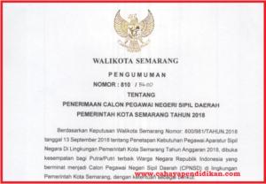 Formasi Seleksi Penerimaan CPNS Kota Semarang Tahun 2018