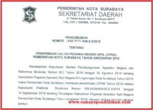 Formasi Seleksi Penerimaan CPNS Kota Surabaya Tahun 2018