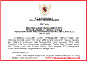 Formasi Seleksi Penerimaan CPNS Kota Tanjungpinang Tahun 2018