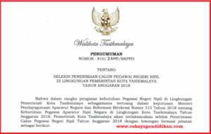 Formasi Seleksi Penerimaan CPNS Kota Tasikmalaya Tahun 2018