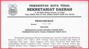Formasi Seleksi Penerimaan CPNS Kota Tegal Tahun 2018