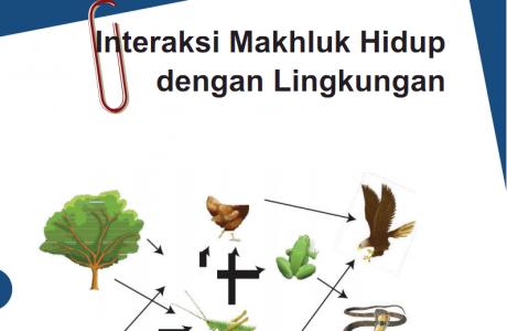 Interaksi Makhluk Hidup dengan Lingkungan