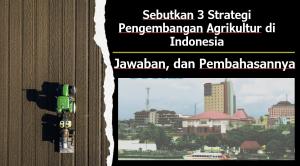 Sebutkan 3 Strategi Pengembangan Agrikultur di Indonesia
