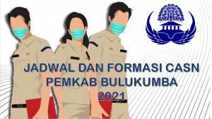Jadwal dan Formasi CPNS-PPPK Pemkab Bulukumba 2021