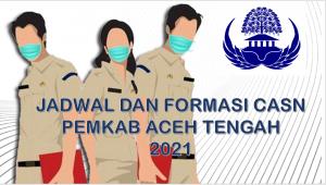 Jadwal dan Formasi CPNS-PPPK Pemkab Aceh Tengah 2021