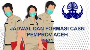 Jadwal dan Formasi CPNS-PPPK Pemprov Aceh 2021