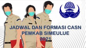 Jadwal dan Formasi CPNS-PPPK Pemkab Simeulue 2021