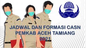 Jadwal dan Formasi CPNS-PPPK Pemkab Aceh Tamiang 2021