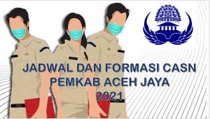 Jadwal dan Formasi CPNS-PPPK Pemkab Aceh Jaya 2021